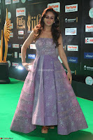 Parul Yadav in Stunning Purple Sleeveless Transparent Gown at IIFA Utsavam Awards 2017  Day 2  Exclusive 05.JPG