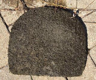 dirty pond filter mat