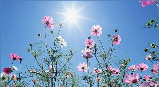 حالة الطقس اليوم الجمعة 5-5-2017 ودرجات الحرارة المتوقعة