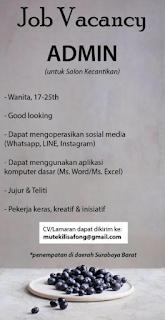 Job Vacancy di Salon Kecantikan di Surabaya Barat Terbaru Maret 2018