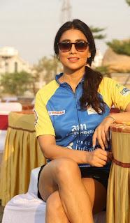 Actress Shriya Saran Stills at Infinity Ride 2016  0012.jpg