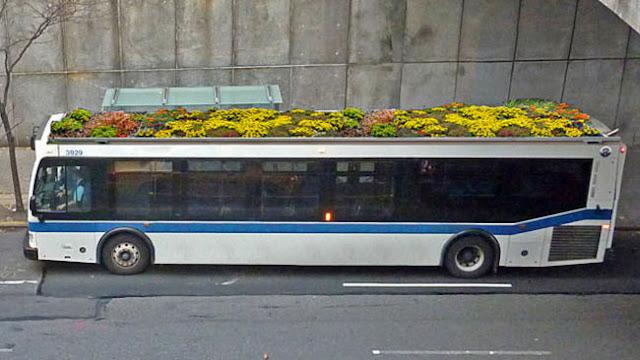 autobuses ecológicos