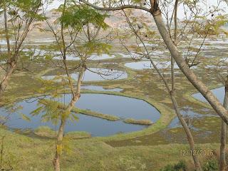 Ajaibnya Pulau Mengambang Di Danau India