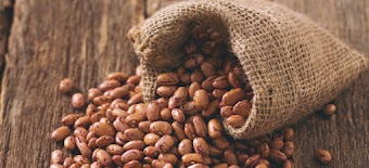 Pinto Beans Nutrition