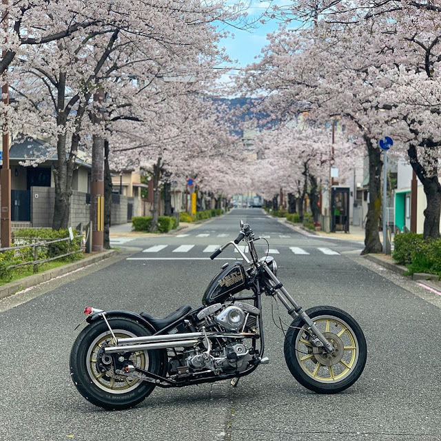 Harley Davidson Shovelhead By Chopper Genie Hell Kustom