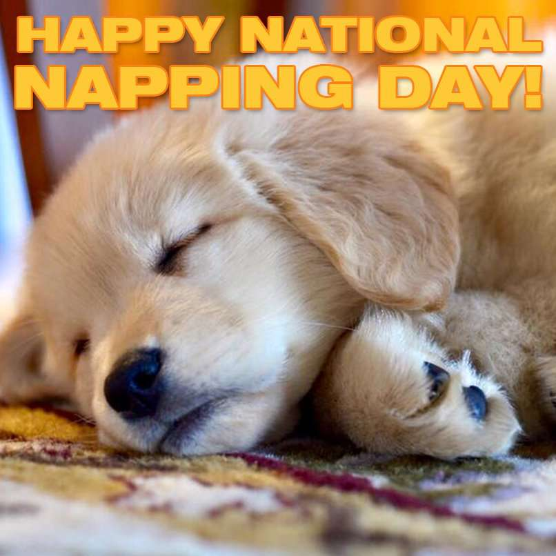 National Napping Day Wishes for Instagram