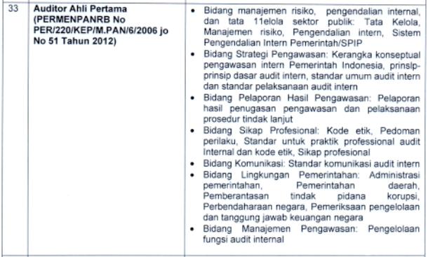kisi kisi materi skb Auditor Ahli Pertama formasi cpns tahun 2021 tomatalikuang.com