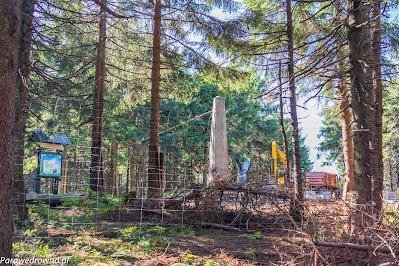 Radziejowa, budowa wieży widokowej