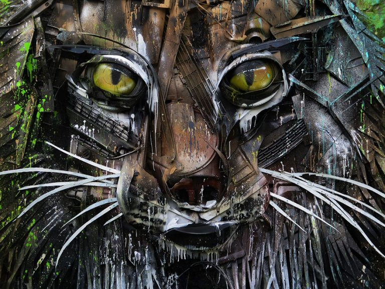 Street Artist Transforms Ordinary Junk Into Animals To Remind About Pollution - Lynx Face Detail