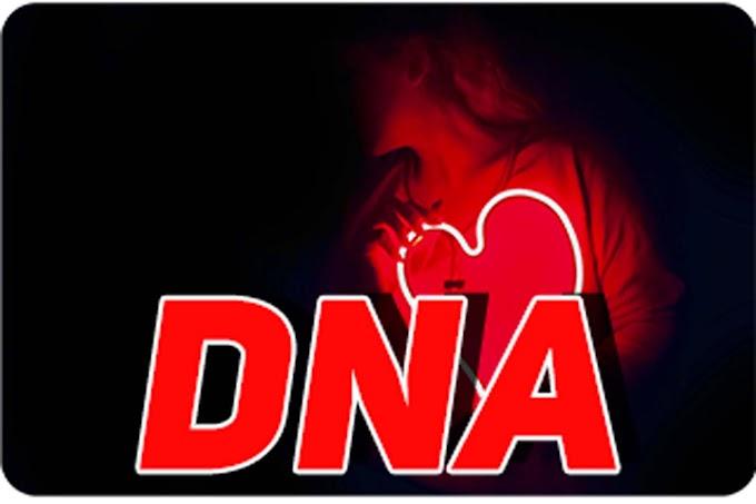 [BTS] DNA Ringtone