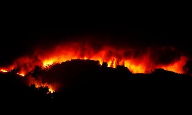 """عاجل  زغوان : حريق هائل بجبل """"الكرايم الطوال"""" و النيران تأتي على أكثر من 40 هك !"""