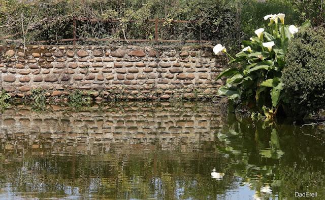 Mur de pierres et mare