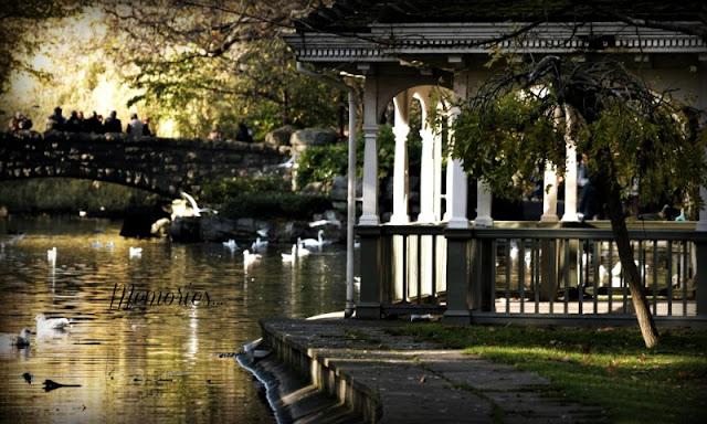 wspomnienia park