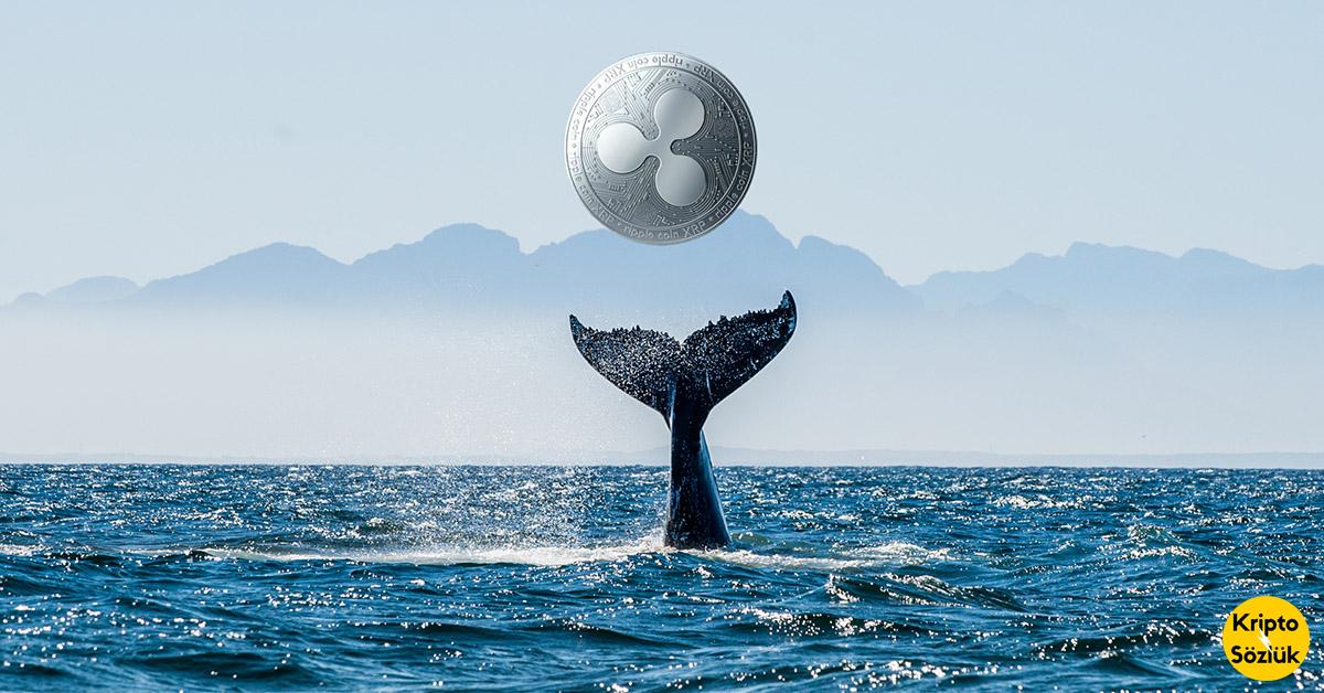 Ripple Balinaları Yine Kendini Gösterdi: Büyük Milktarda XRP Taşındı!