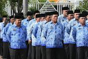 BKN Siap Terbitkan NIP Bagi Tenaga Honorer Sebanyak 45.949 Orang