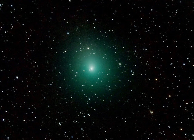 A family of comets reopens the debate about the origin of Earth's water