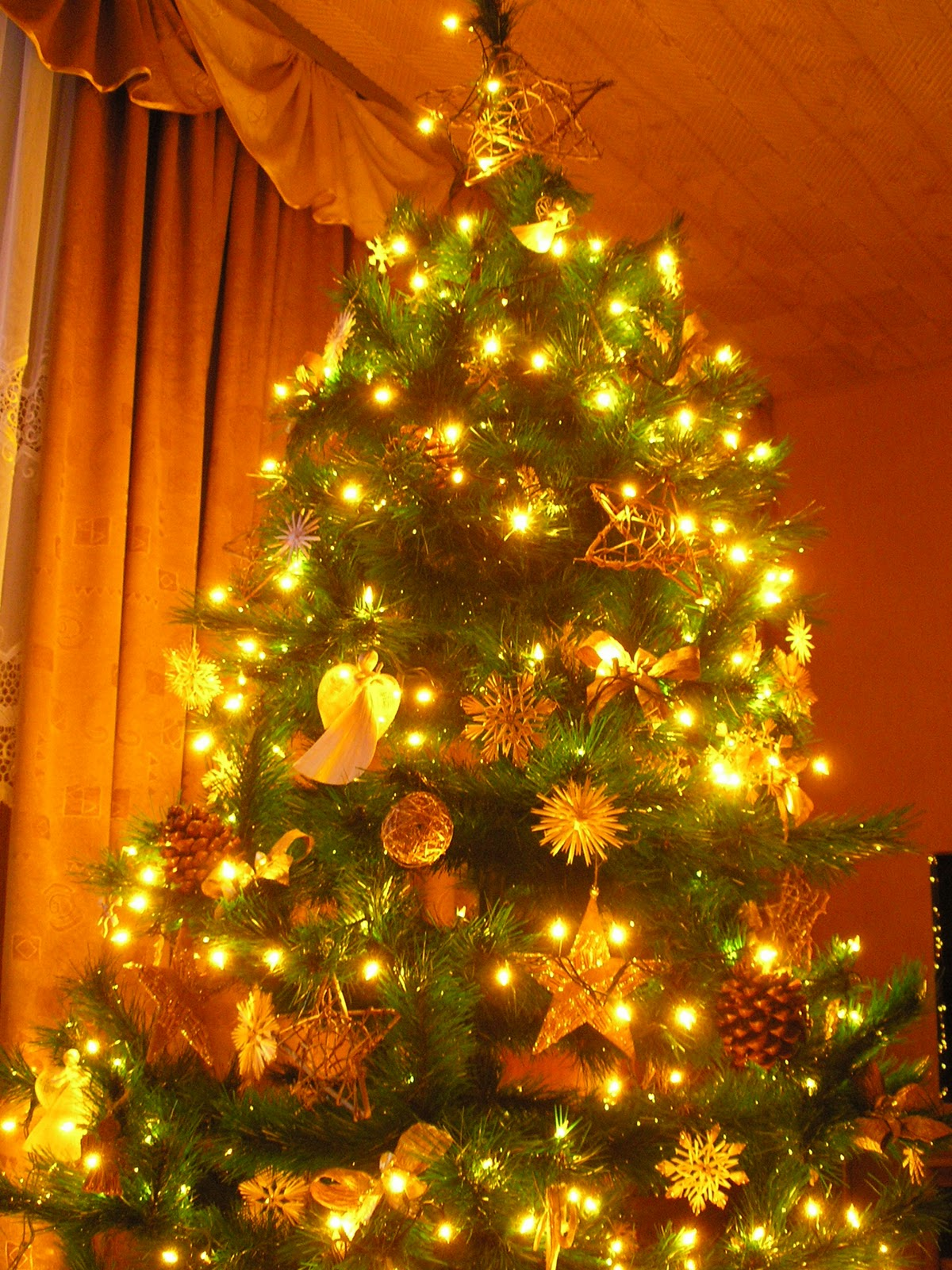 Kayo's Blog: My Christmas in Poland