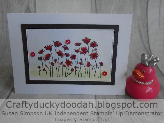 Craftyduckydoodah!, Painted Poppies, Susan Simpson UK Independent Stampin' Up! Demonstrator, Supplies available 24/7 from my online store, Water colour technique,