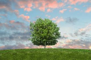 친환경 분체도료