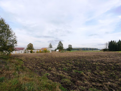 Fields and farms in Będargowo