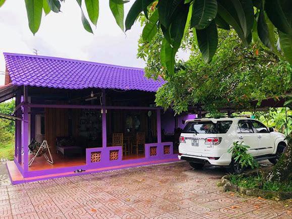 Hình chụp Ngôi nhà màu tím ở Cần Thơ- ảnh 2