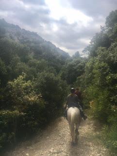 Riitta reissaa, petit luberon, Provence, ranska, ratsastusmatka, riding