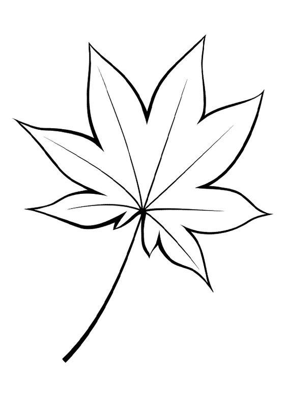 Hình tô màu cái lá mềm mại