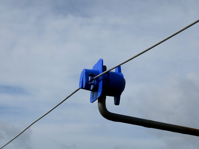Blue plastic something as part of electric fence.