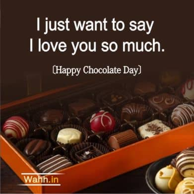 Chocolate Day Quotes for Boyfriend hindi