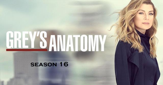 Grey's anatomy season 16