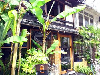 Cafe' Bibliotic Hello