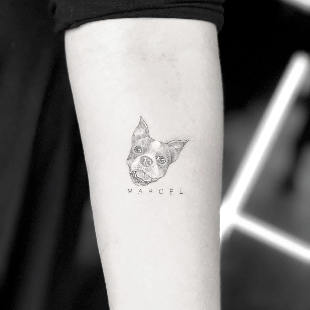 Tatuaje pequeño de bulldog frances en brazo de mujer