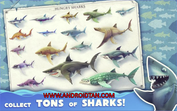 terbaru kepada kalian semua sehingga kalian sanggup mempunyai game terupdate setiap harinya Hungry Shark World Mod Apk + Data v2.4.2 Unlimited Gems Sharks Unlocked Terbaru