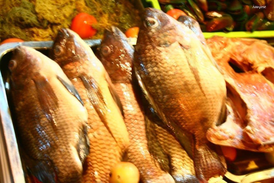 Fresh tilapia at Tiongson Arcade in Mindanao