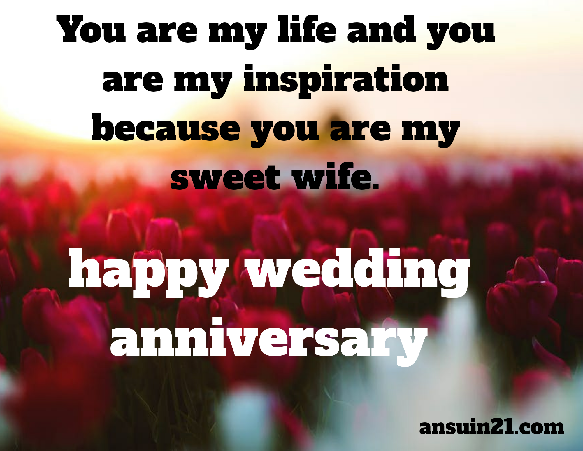 Happy marriage anniversary wishes English for Wife, or spouse, sms, greetings,status,