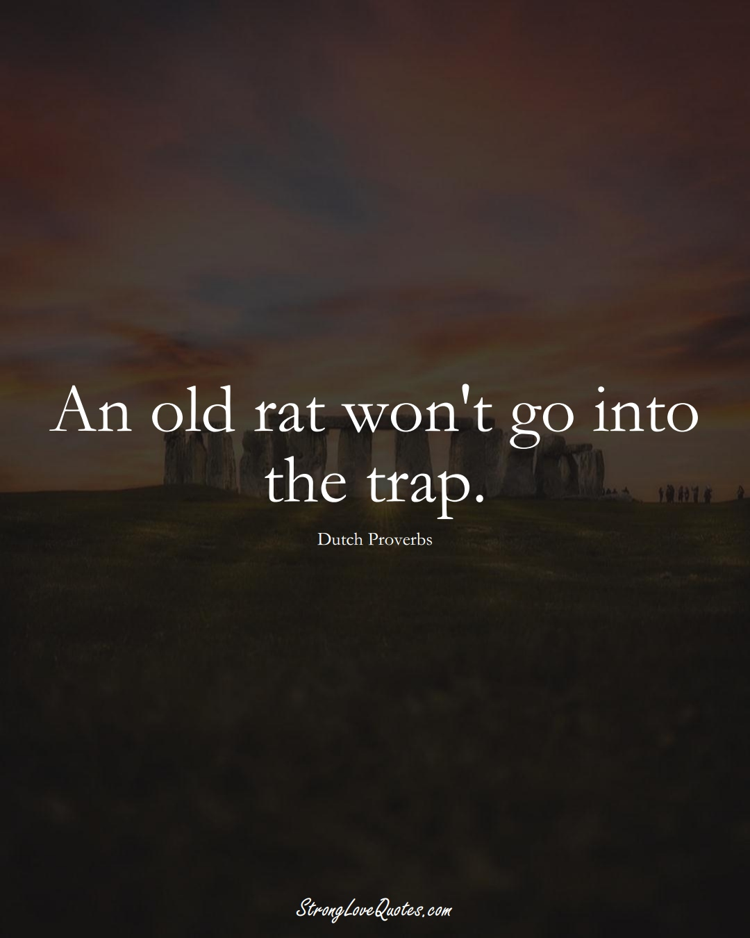 An old rat won't go into the trap. (Dutch Sayings);  #EuropeanSayings