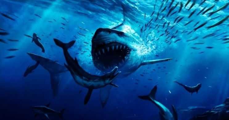 Dinozor köpek balığı olarak da bilinen bu balık, büyük omurgalı deniz canlılarıyla beslenirdi.
