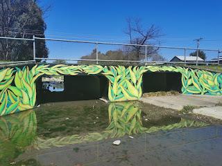 Albury Street Art | Waites Park mural by Kristina Greenwood