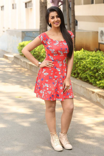 Nikki Galrani in Designer Western Wear At Malupu Movie Release Date Press Meet