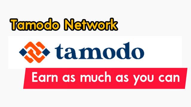 tamodo network