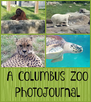 A Columbus Zoo PhotoJournal on Homeschool Coffee Break @ kympossibleblog.blogspot.com