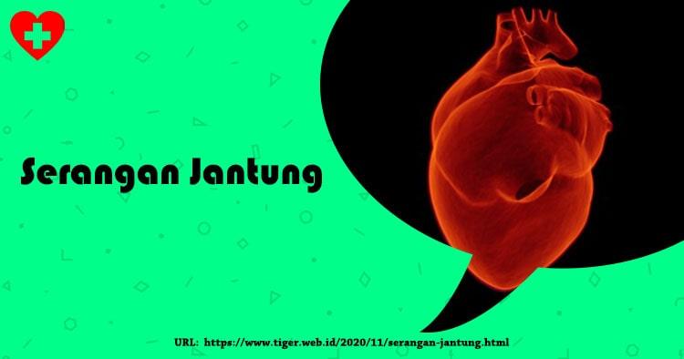 Mengenal Serangan Jantung | Berikut Penyebabnya