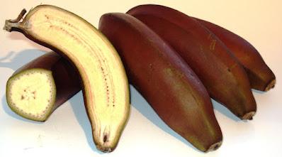 pisang merah, pisang genderuwo, pisang,