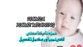Hamza Name Meaning In Urdu || hal sistema-decimal info