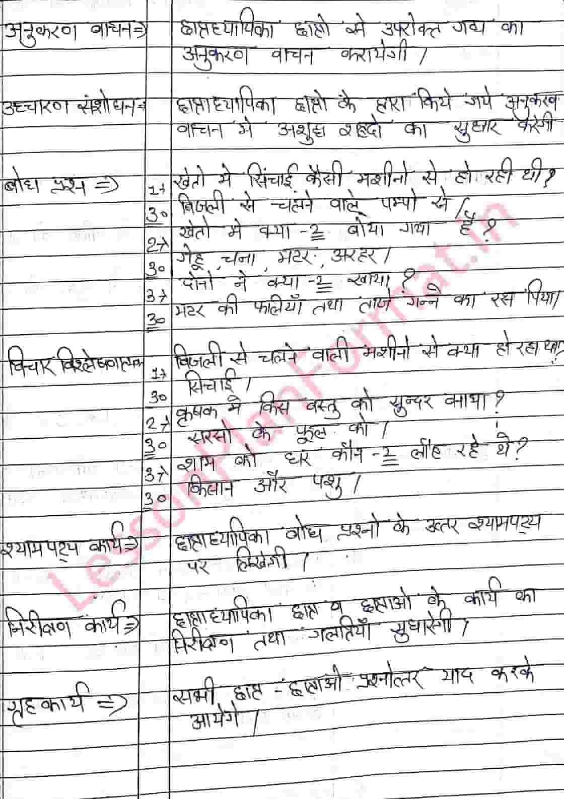 Hindi Lesson Plan on Village