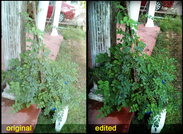 before and after photo editing with Adobe Photoshop