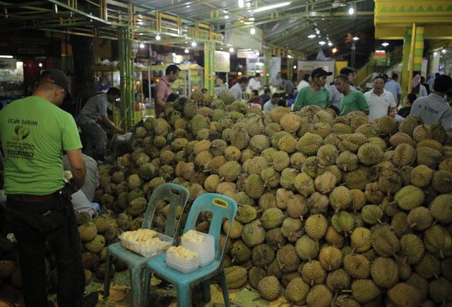 Durian Ucok Medan