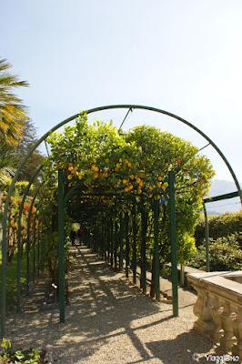 Giardini di Villa Carlotta sul Lago di Como