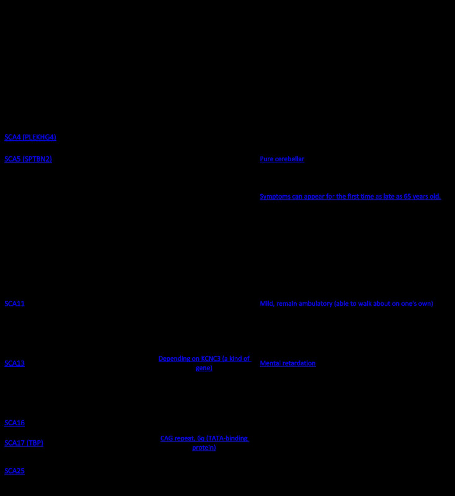 Epiphany Spinocerebellar Ataxia SCA and Autism