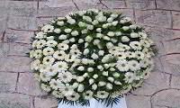 Πάτρα: «Έφυγε» σε ηλικία 51 χρόνων ο Μιχάλης Παρασκευόπουλος αμέσως μετά το μνημόσυνο του αδελφού του Παύλου